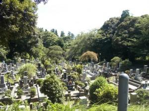 骨灰龕位,骨灰位,墓地